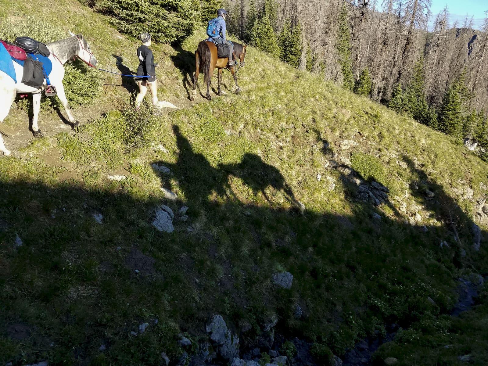 Horseback Riding Colorado Trail Foundation