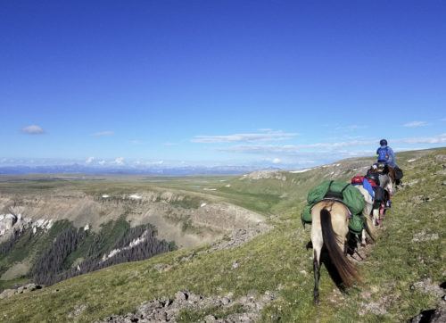 Rider leads pack horses up high with big view of mountains