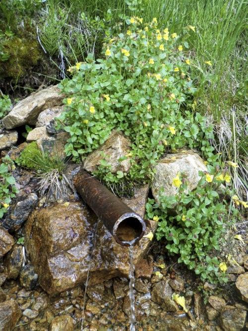 metal pipe emitting fresh water (click for larger)