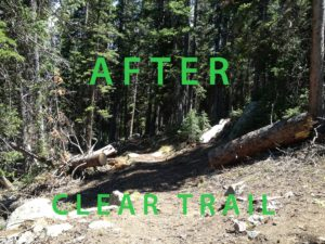 Deadfall cleanup