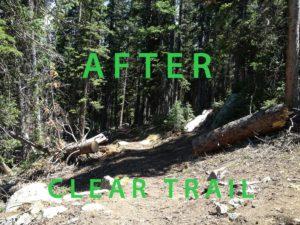 Deadfall cleanup