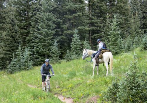 Cyclist meets horseback rider