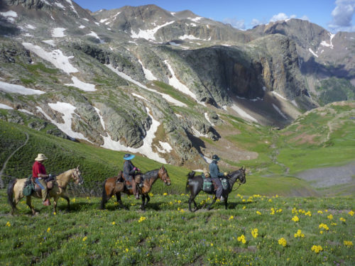 Three horseback riders with flowers, mountains, and snowfields