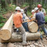team positioning log
