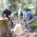 team lifting log