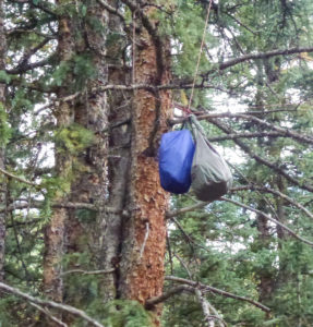 Stuff bags on rope in trees