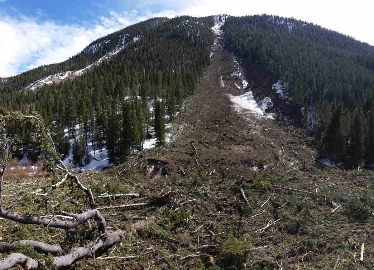 Avalanche slide path and debris near Buena Vista affecting Colorado Trail Segment 13
