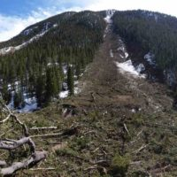 Avalanche slide path and debris near Buena Vista affecting Colorado Trail Segment 13