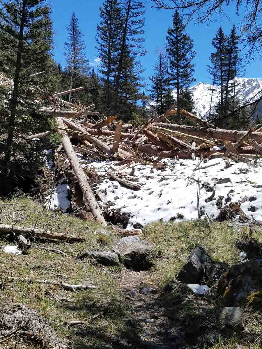 In Elk Creek, CT Segment 24, the Trail (foreground) disappears beneath avalanche debris maybe 30 feet high.