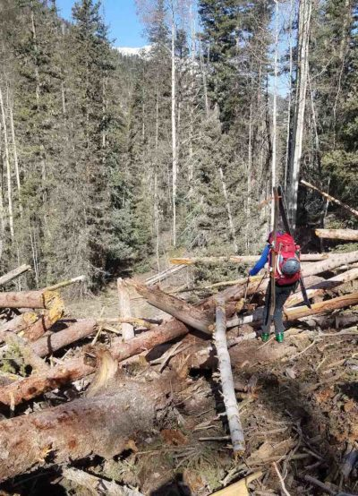 Backpacker encounters avalanche debris above Silverton in CT Segment 24, Elk Creek.