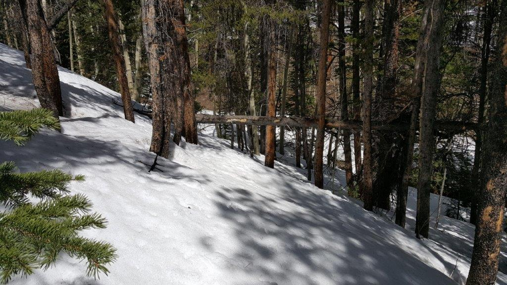 Snow conditions along The Colorado Trail, Segment 12, on May 6, 2019.