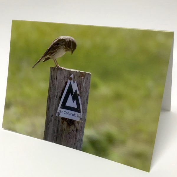 Note Card Bird Admiring Marker